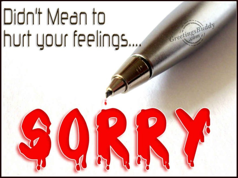 Hurt Your Feelings Sorry Message