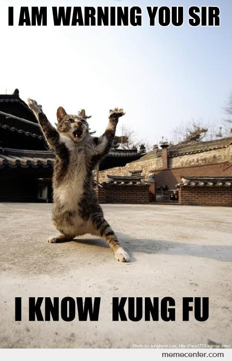 I Am Warning You Sir I Know Kung Fu Funny Ninja Memes