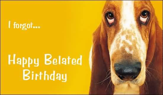 I Forget Happy Belated Birthday Wishes Dog Image