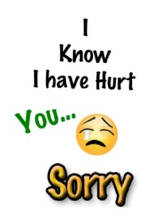 I Have Hurt You Sorry Message