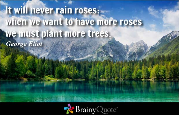 It will never rain roses when we want to have more roses we must plant more George Eliot
