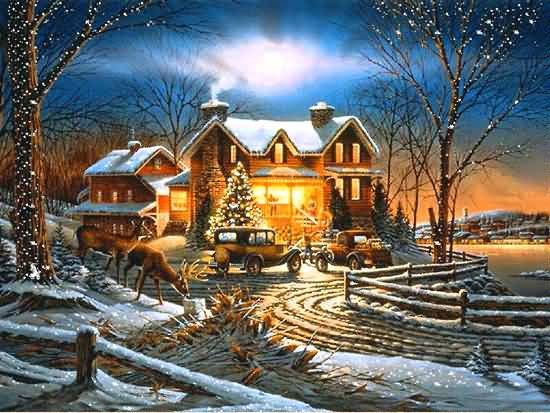 Merry Christmas Lights House