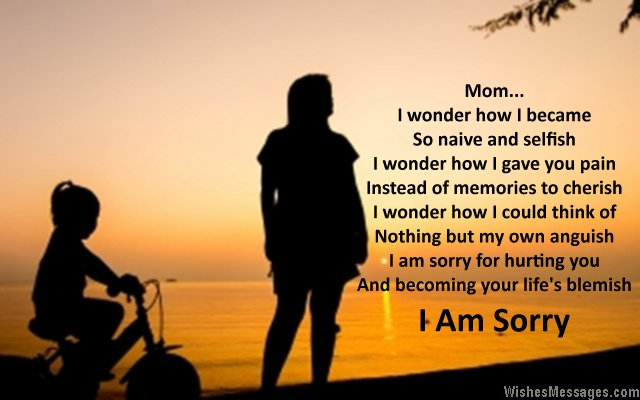 Mom I Am Sorry Quotes Image From Son