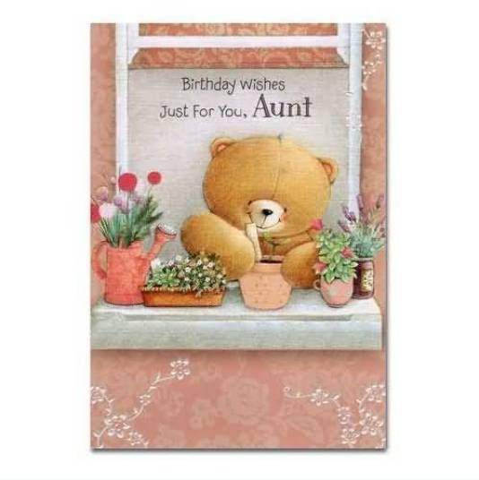Perfect Happy Birthday Greeting Card For Lovely Aunt
