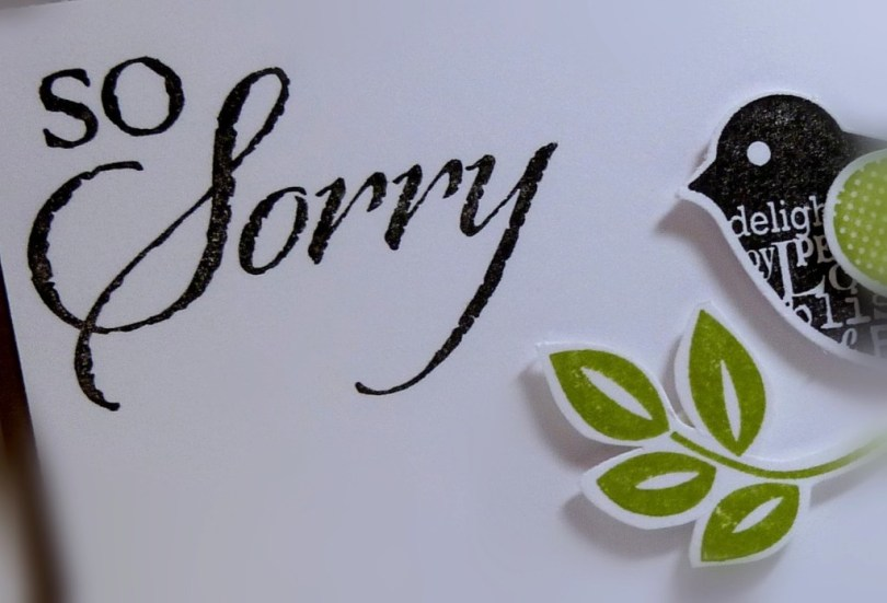 So Sorry Greeting Card Picture