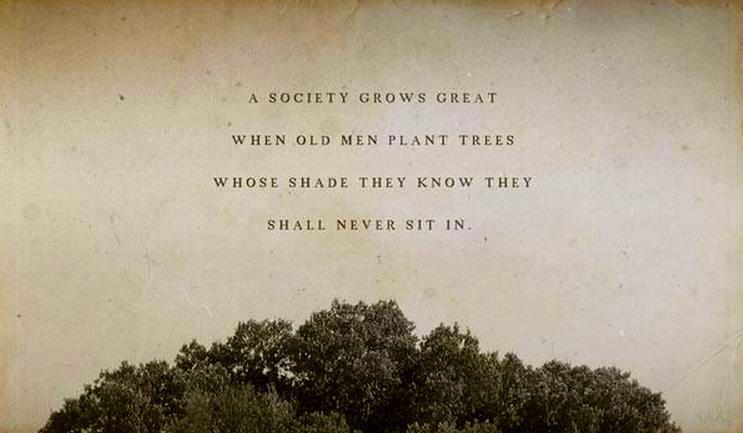 Society grows great when old men plant trees whose shade they know they shall never Tree Quotes