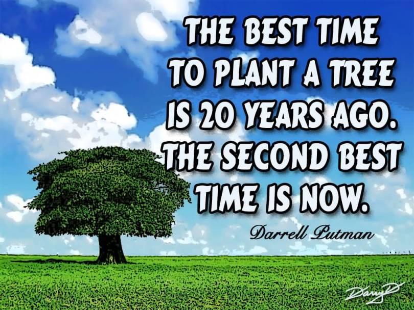 The best time to plant a tree is twenty years ago the second best time is Darrell Putman