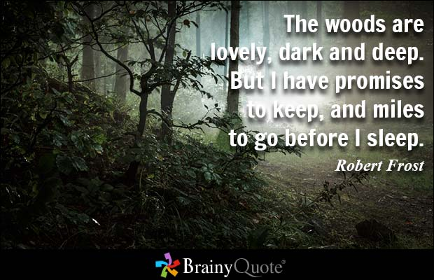 The woods are lovely dark and deep. But I have promises to keep and miles to go before i sleep. Robert Frost