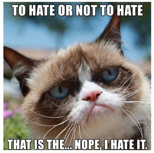 To Hate Or Not To Hate That Is The Nope I Hate It Grumpy Cat Meme