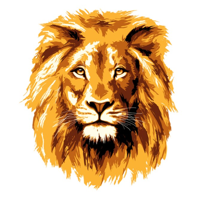 30 Amazing Lion Wallpaper Images Pics Snaps Etc