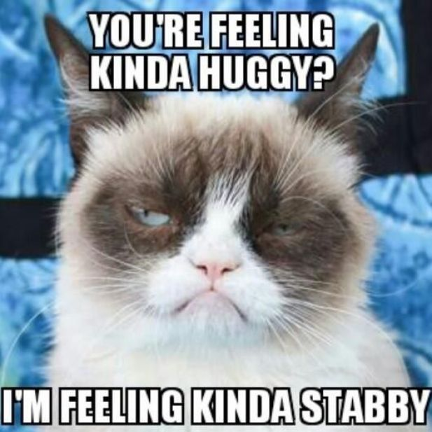 You Are Feeling Kinda Huggy I Am Feeling Kinda Stabby Grumpy Cat Memes Snap