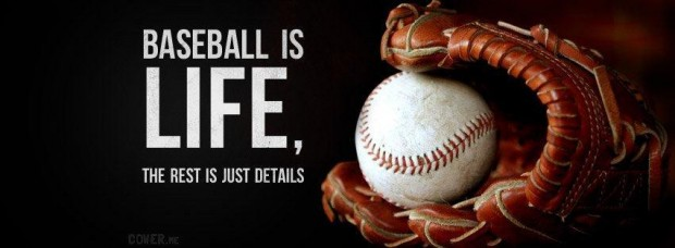 Baseball Is Life The Rest Is Just Details