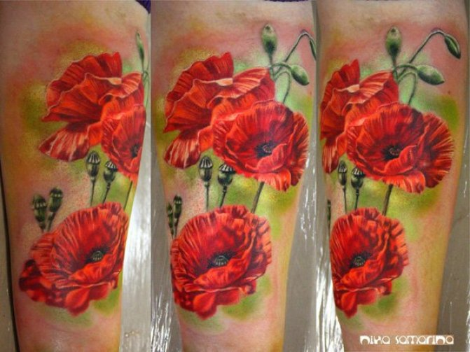 elegant 3D Poppies tattoo on calf With colourful ink For Man And Woman