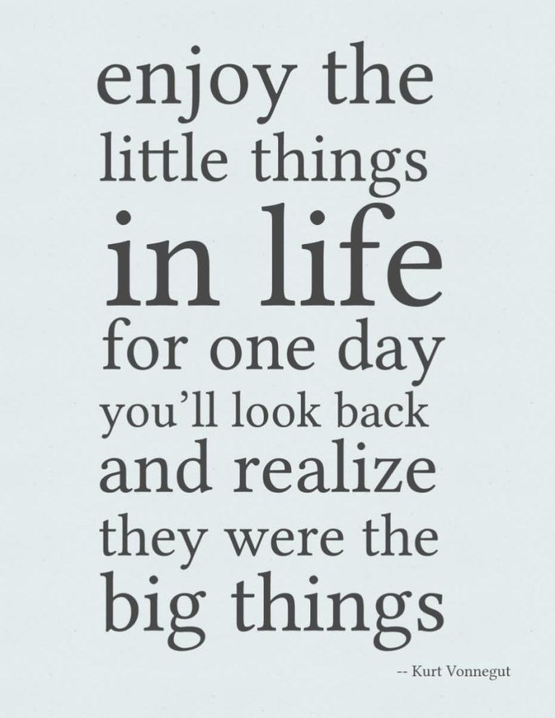 Enjoy The Little Things In Life For One Day Youll Look Back And Realize Thay Were The Big Things Kurt Vonnegut