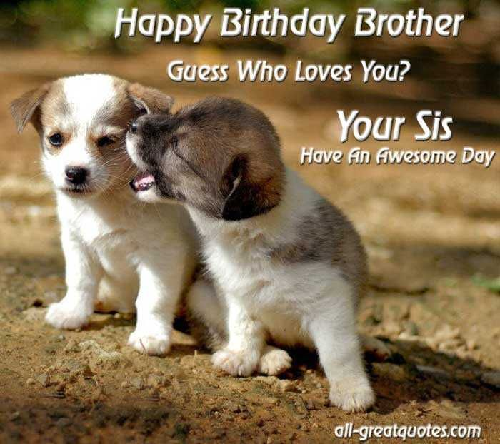 happy birthday brother guess who loves you your sis have an awesome day