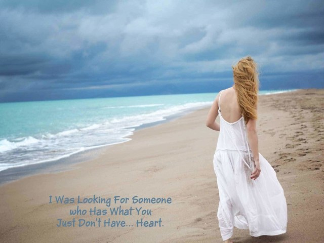 i Was Looking For Someone Who Has What You Just Dont Have Heart