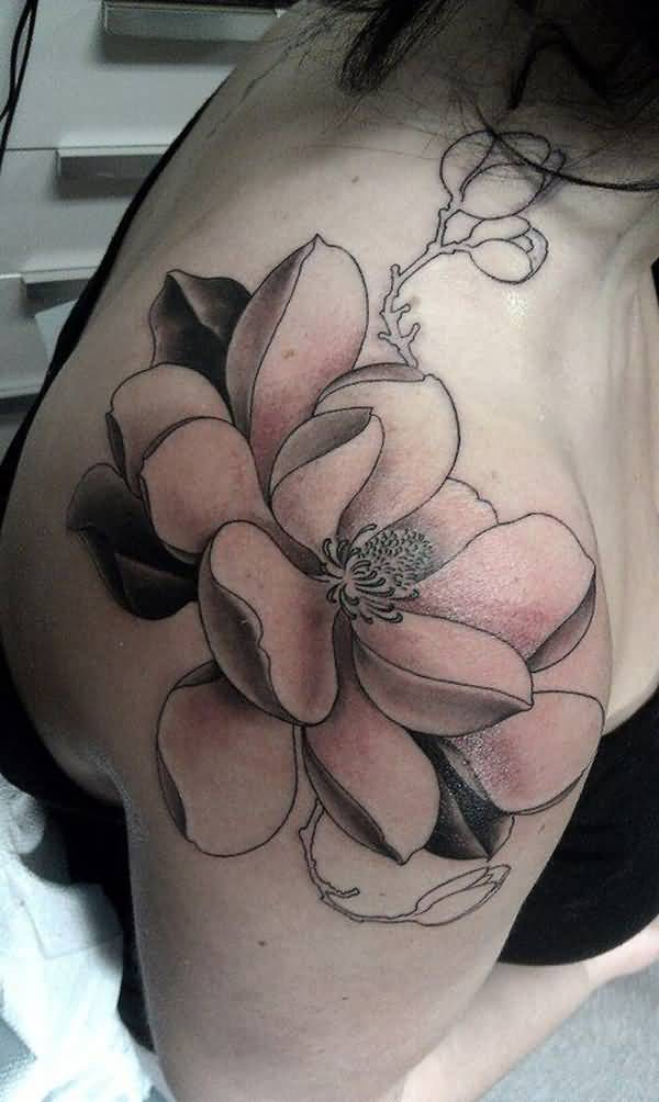 incredible magnolia tattoos black and white on shoulder With colourful ink For Man And Woman