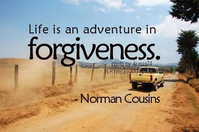 Life Is An Adventure Isn Forgiveness Norman Cousins