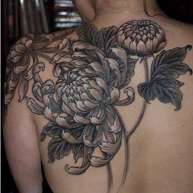 nice chrysanthemum tattoo on back with black ink for man & woman