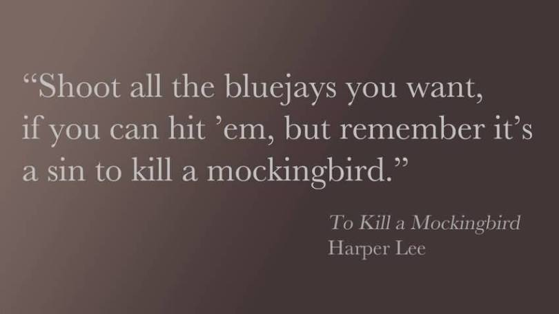 Shoot All The Bluejays You Want If You Can Hit Em But Remember It S A Sin To Kill A Mockingbird Harper Lee