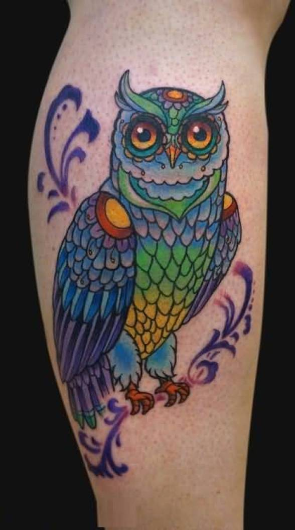superb blue and green color ink animated owl tattoo on girl's sleeve for girls only made by expert artist