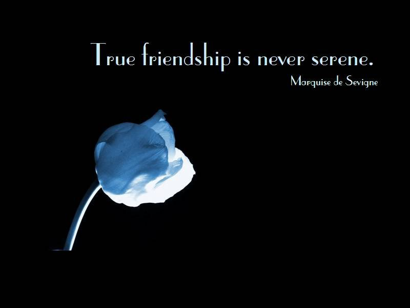 true friendship is never serene. marquise de sevigne