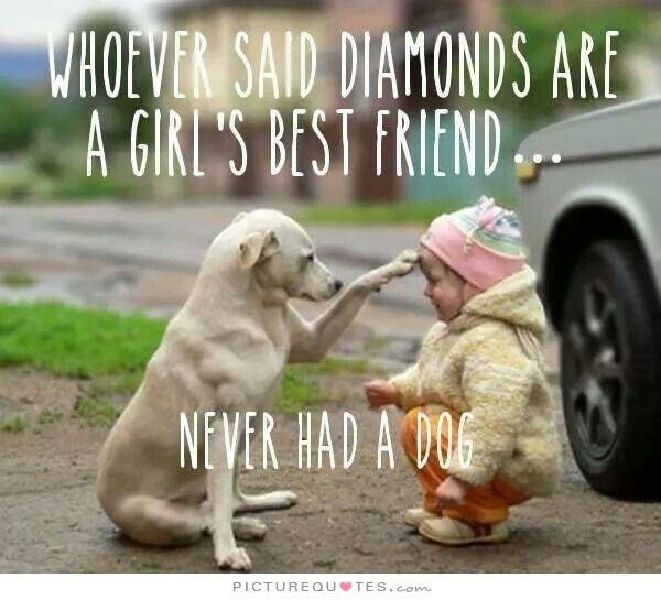 whoever said diamonds are a girl's best friend .. never had a dog
