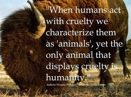 Animal Quotes When humans act with cruelty we characterize them as animals yet the only animal that displays cruelty is humanty