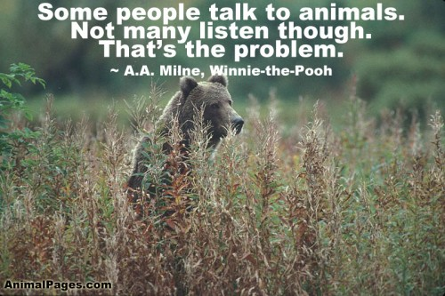 Animal Quotes009