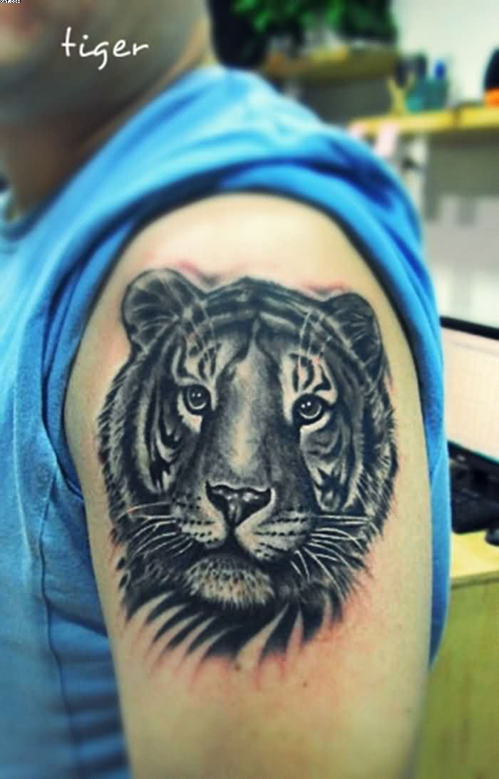 Beautiful Black Color Ink Tiger Tattoo On The Arm With Vivid Eyes For Boys