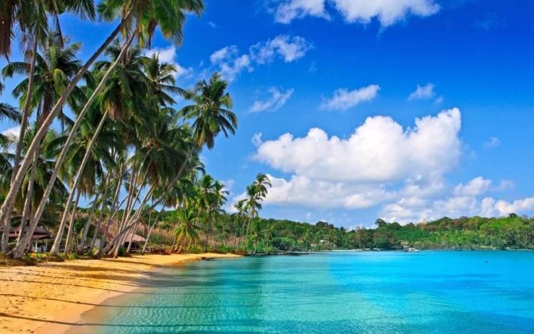 Best Beach Nature Full HD Wallpaper