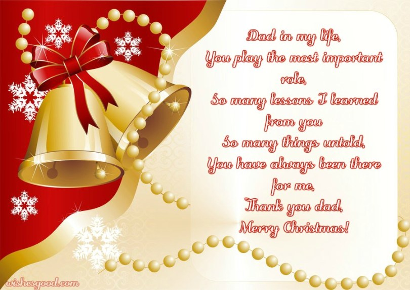 Best Christmas Wishes To My Special Dad