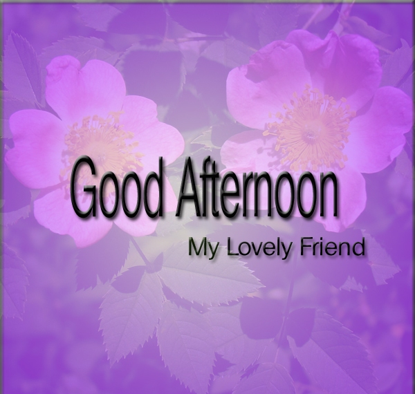 Best Friend Good Afternoon Wishes Image