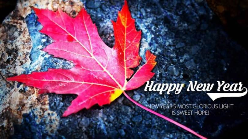 Best Quotes Happy New Year Wishes Image