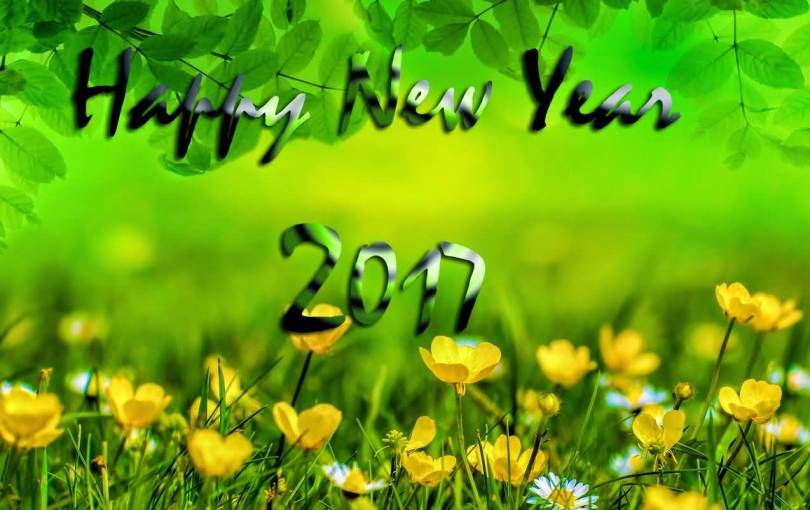 Best Wishes Happy New Year 2017 Image