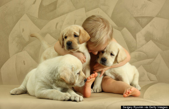 Boy Hugging Dogs Wish You A Very Happy Hug Day