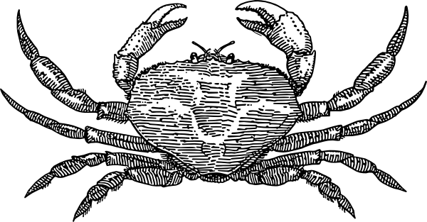Coolest Black Color Ink Crab Tattoo Design For Girls