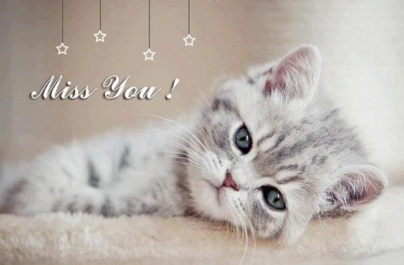 Cute Sad I Miss You Wallpaper
