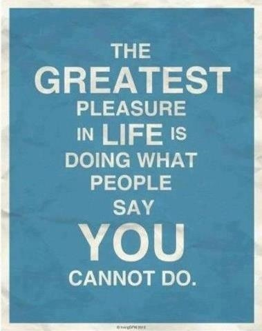 FFA Quotes The greatest pleasure in life is doing what people say you cannot do