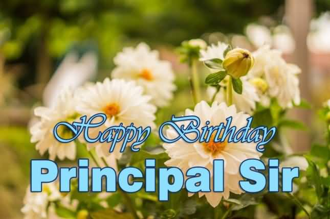 Fantastic Flowers Birthday Principal Sir Greeting Image