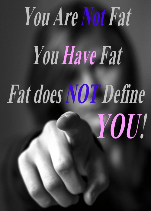 Fat Sayings You are not fat you have fat