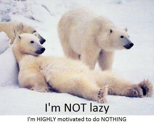 Funny Lazy Memes I'm Not Lazy I'm Highly Motivated