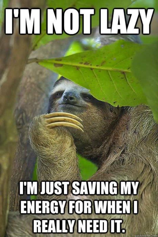 Funny Lazy Memes I'm Not Lazy I'm Just Saving My Energy