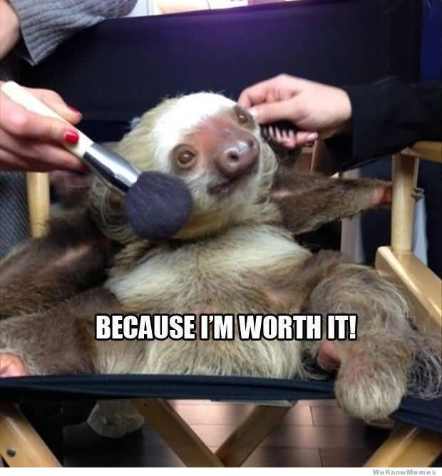 Funny Sloth Memes Because i'm worth it!