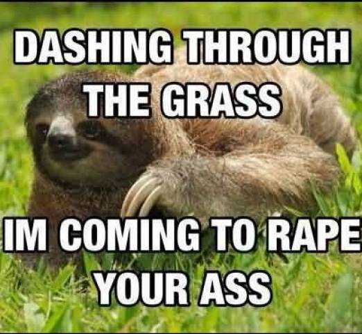 Funny Sloth Memes Dashing through the grass I'm coming to rapr your ass