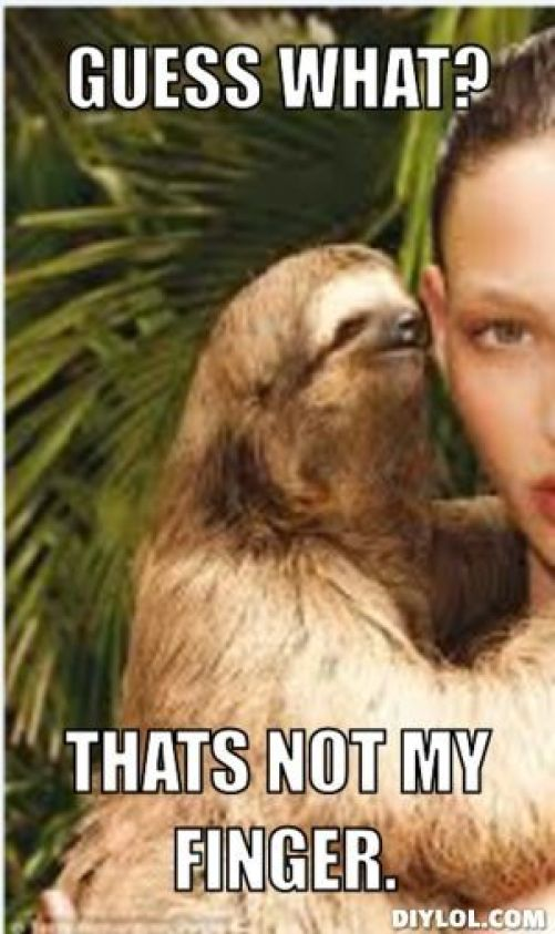 Funny Sloth Rape Memes Guess what thats not my finger Photos