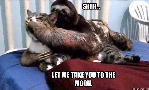 Funny Sloth Rape Memes Shhh.. let me take you to the moon Pictures