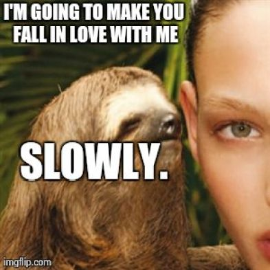 Funny Sloth Whisper Memes I'm going to make you fall in love with me slowly