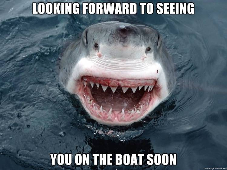 Funny Sloth Whisper Memes Looking forward to seeing you on the boat soon