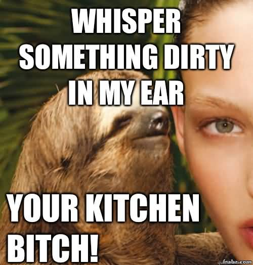 Funny Sloth Whisper Memes Whisper something Dirty in my Ear Your Kitchen Bitch